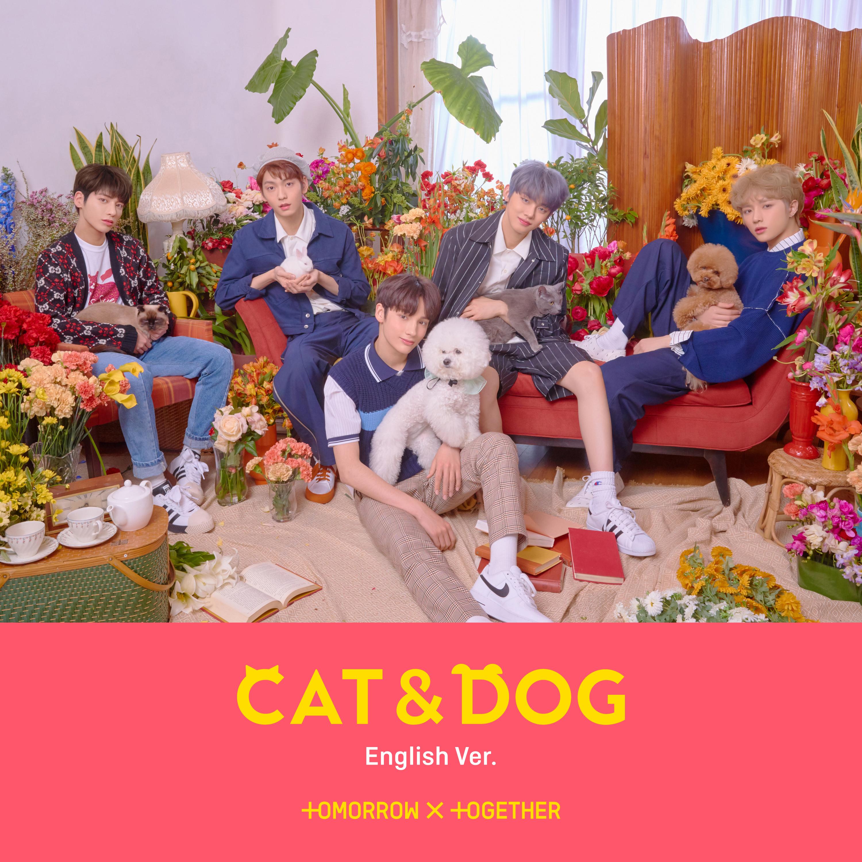 Cat & Dog (English ver.)