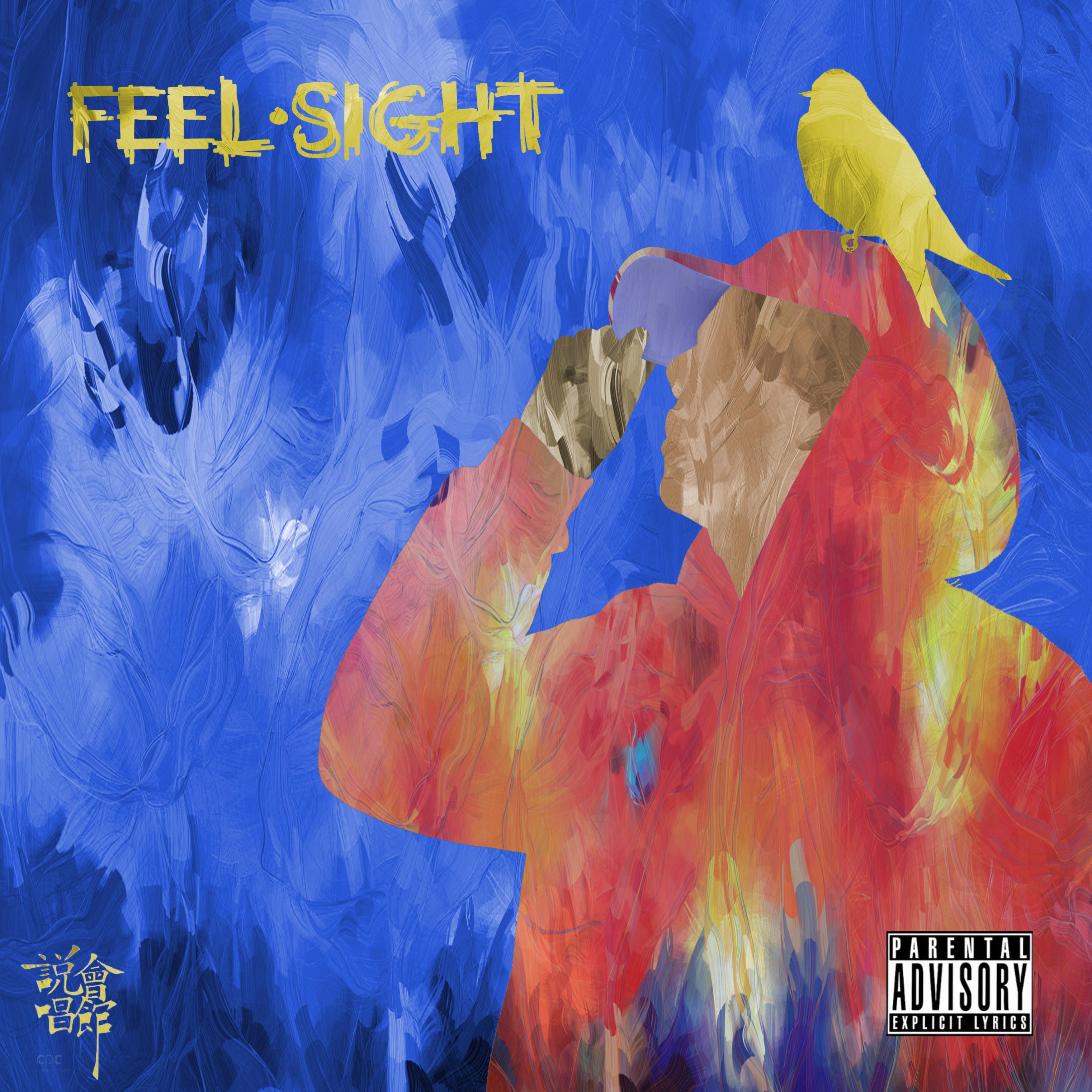 Feel & Sight
