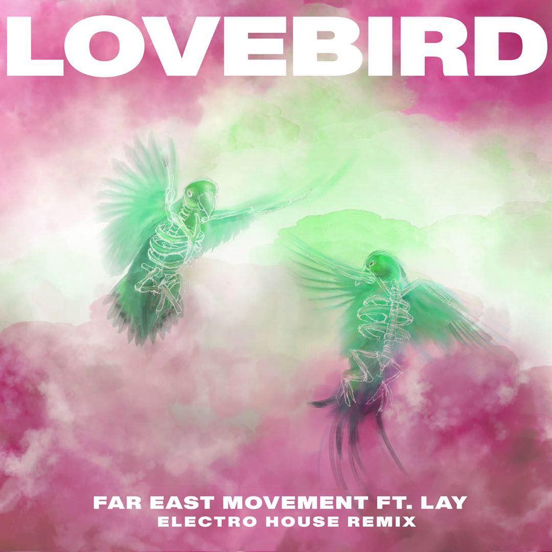 Lovebird (Remix)