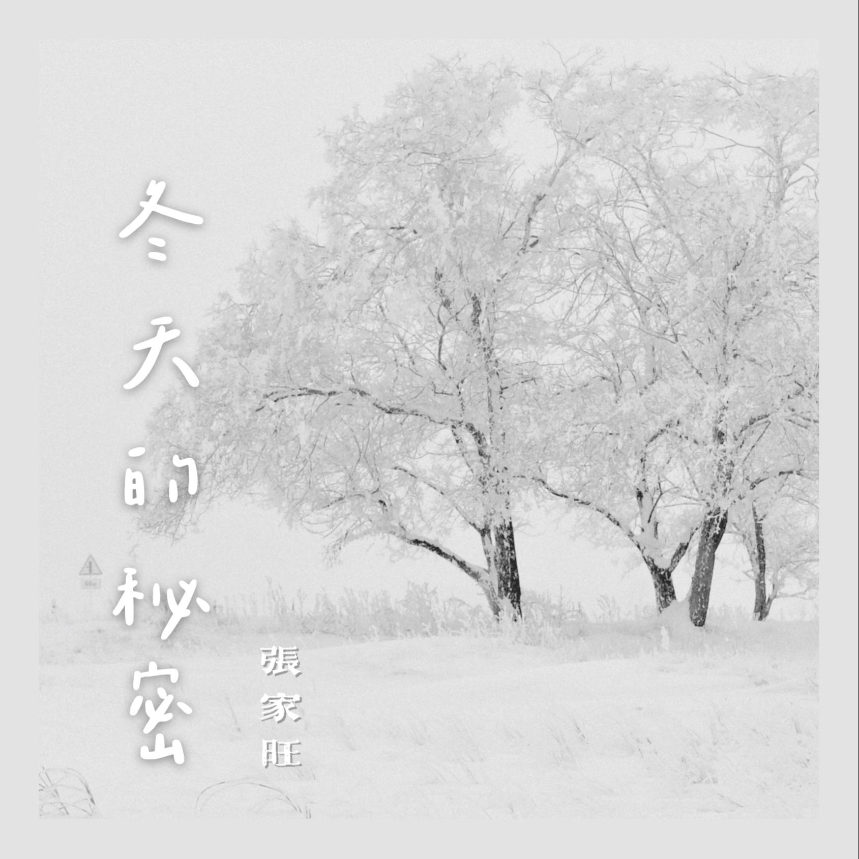 张家旺《冬天的秘密》歌词